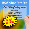 BCW Clear Poly Pro 2.25 X 1.25 - 1