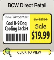 BCW DT 2.00 X 1.00 Vert Box - 1